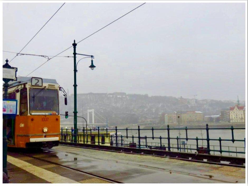 Budapest Tram Scam