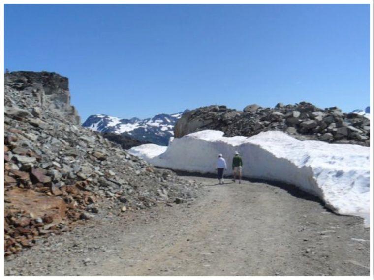 Whistler Mountain Hikes: Hike to the summit