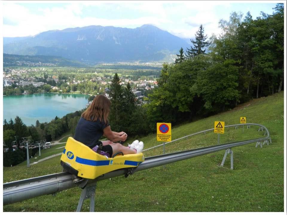 Lake Bled Summer Toboggan