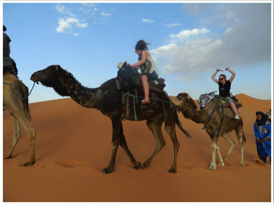 Sahara Camel Trek Morocco