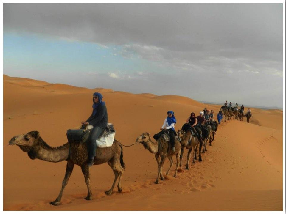 Sahara Camel Trekking Morocco