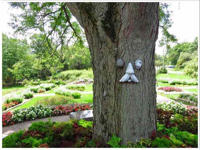 Dubuque Arboretum Iowa USA