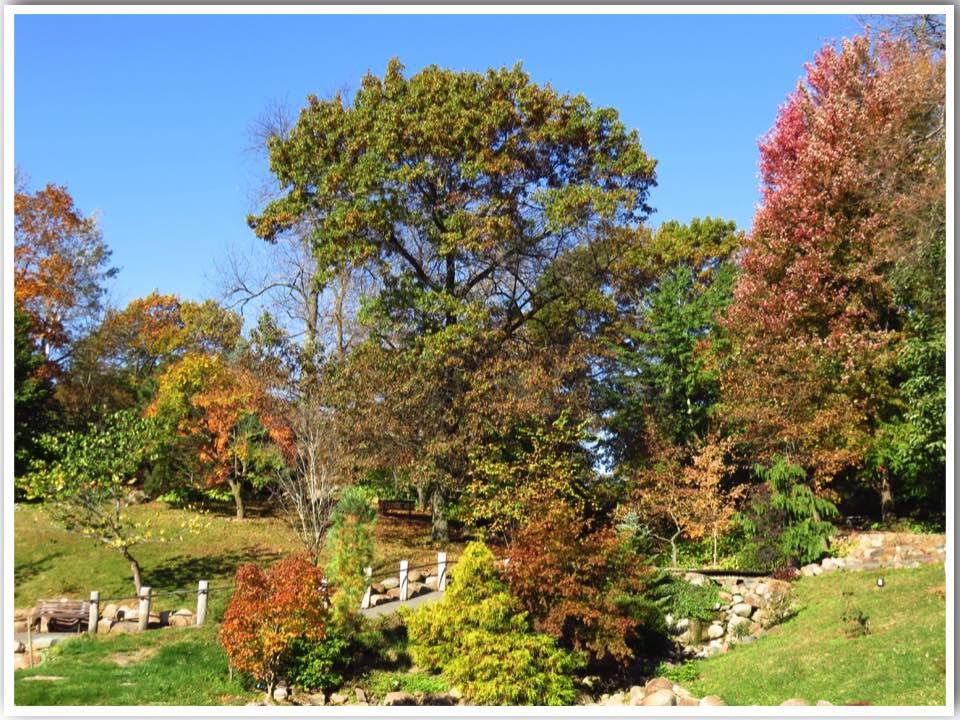 Dubuque Arboretum Iowa