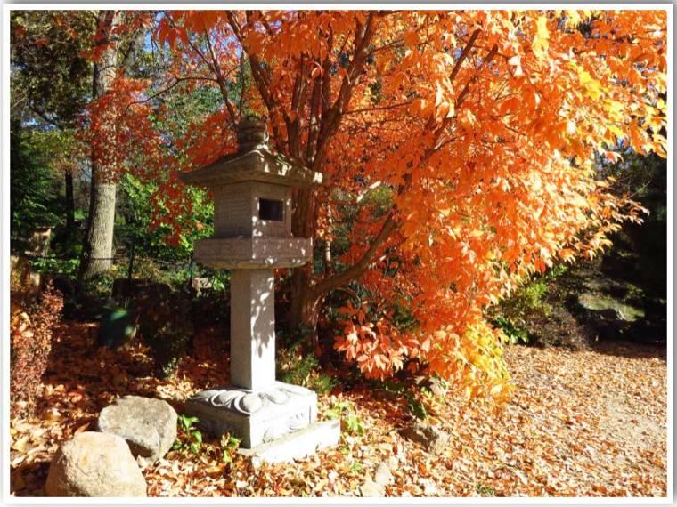 Japanese Gardens Dubuque Arboretum