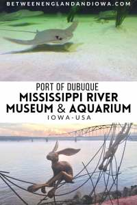 Port of Dubuque and the Mississippi River Museum and Aquarium in Dubuque Iowa USA
