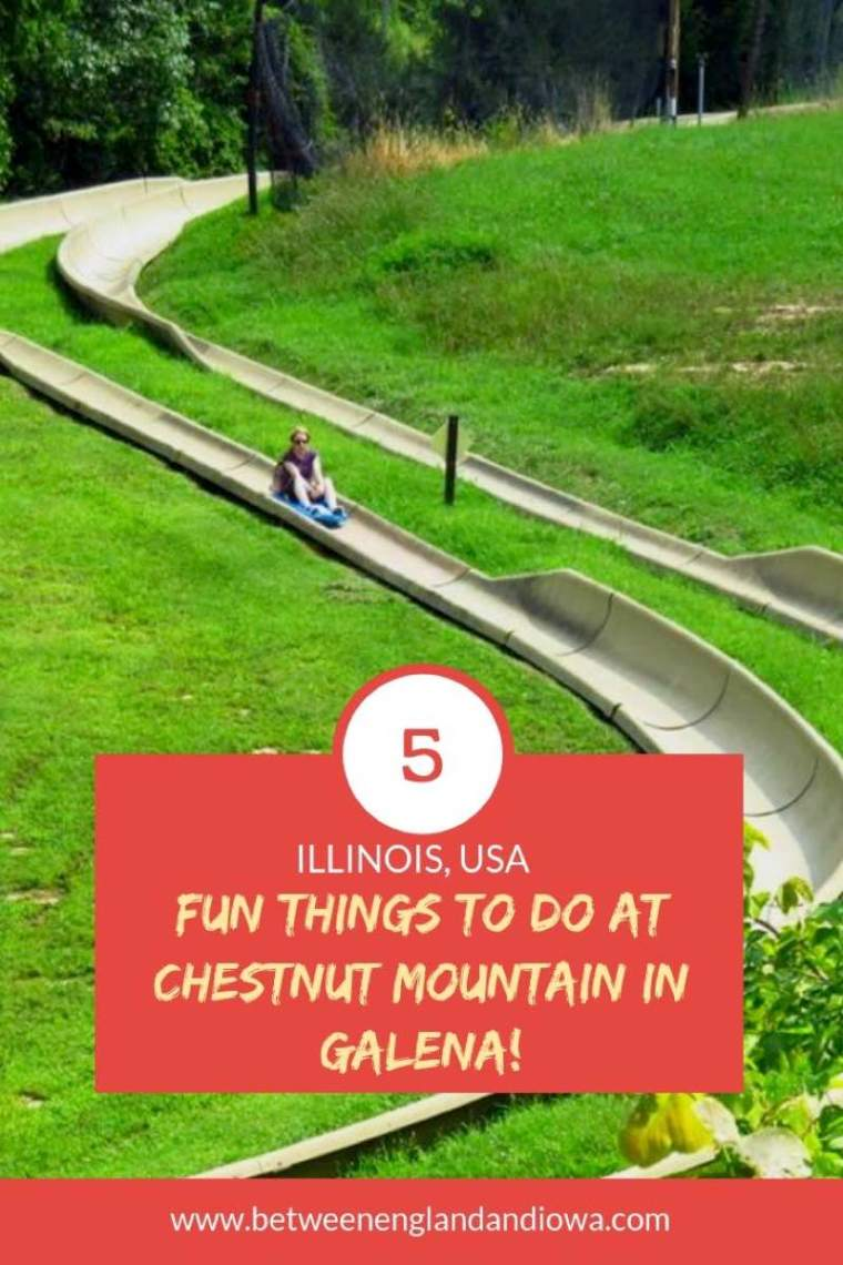 5 fun summer activities at Chestnut Mountain Resort in Illinois USA! Check out the the Alpine Slide in Galena!