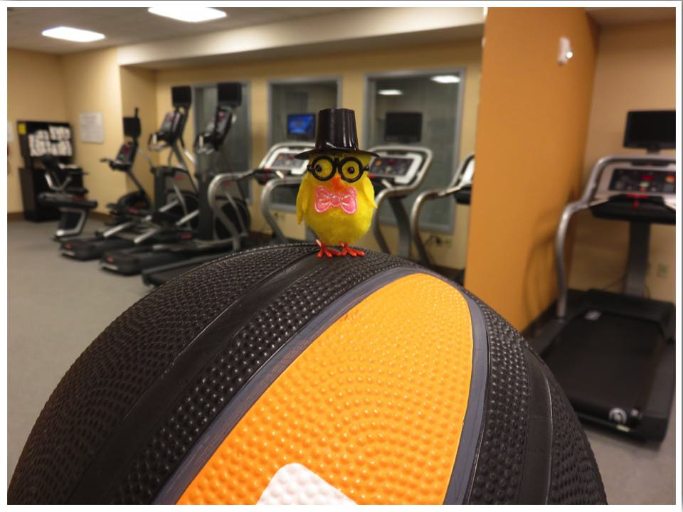 Hilton Garden Inn Iowa City Fitness Center