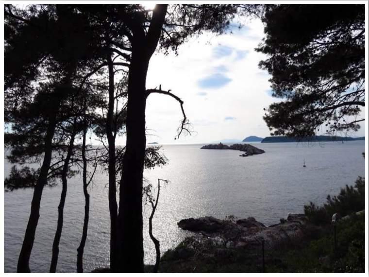 Forest Park Velika Lapad Dubrovnik