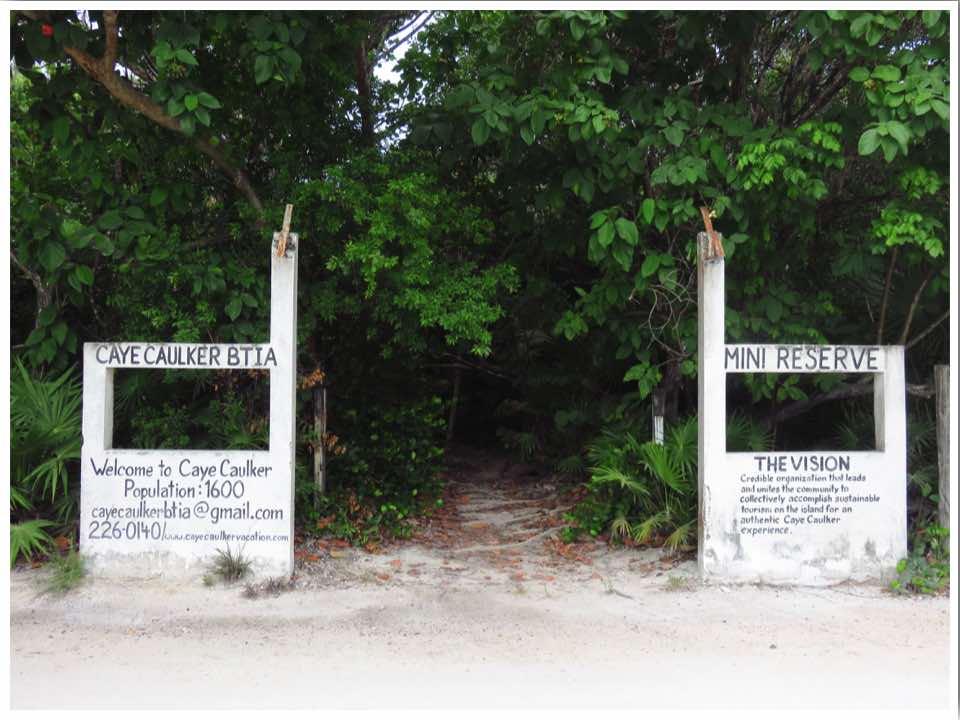 Caye Caulker Mini Reserve