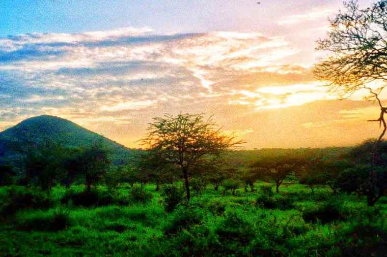 Kenya Tsavo West National Park