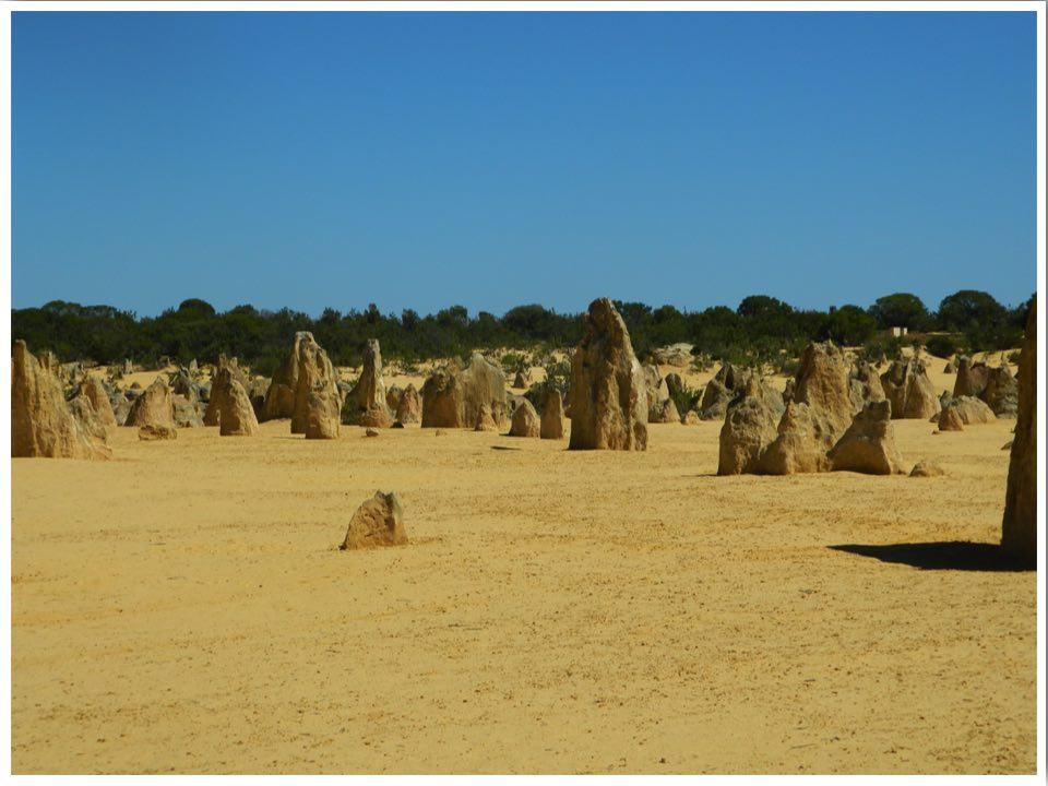 Western Australia Itinerary Nambung National Park