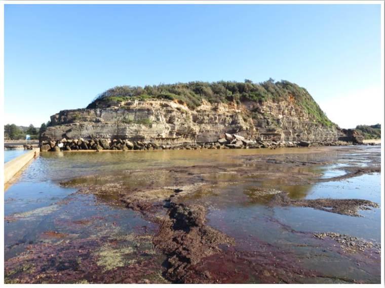 North Narrabeen Beach NSW Australia