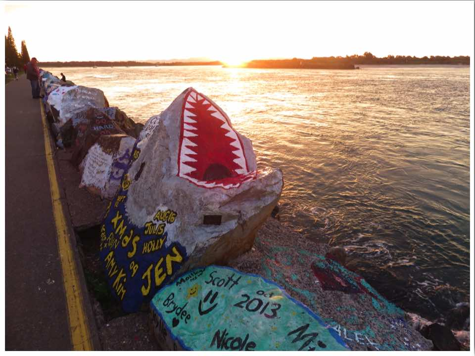 Australia Brisbane to Sydney Road Trip Port Macquarie breakwall painted rocks