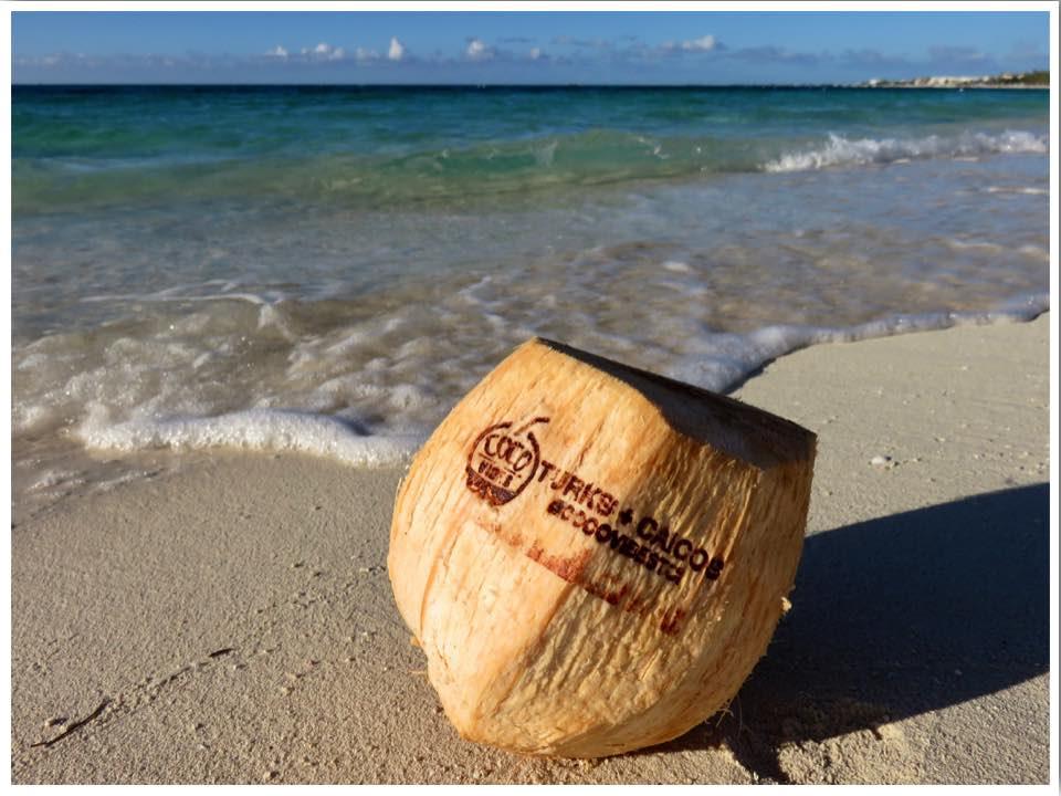 Turks and Caicos Coconut