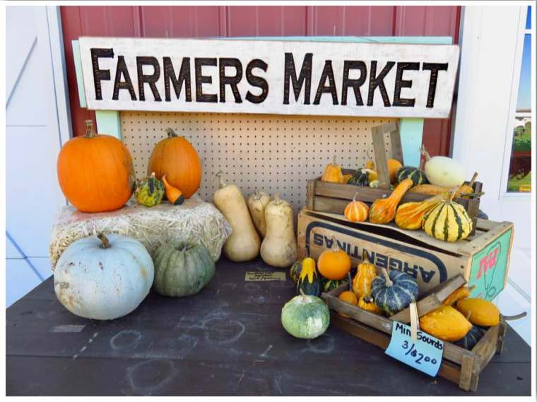 Pumpkin Patch Farmers Market