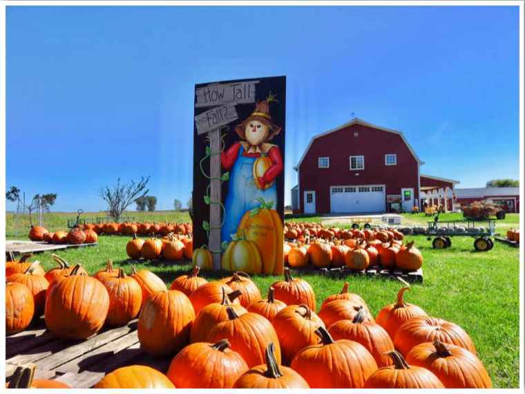 Pumpkin Patches Iowa