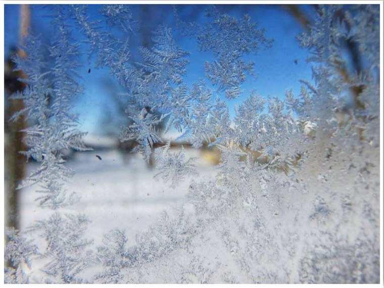 Polar Vortex Icy Window