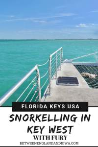 Snorkelling in Key West Florida with Fury Catamaran tours!