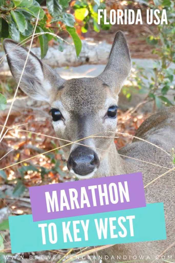 Marathon Florida to Key West
