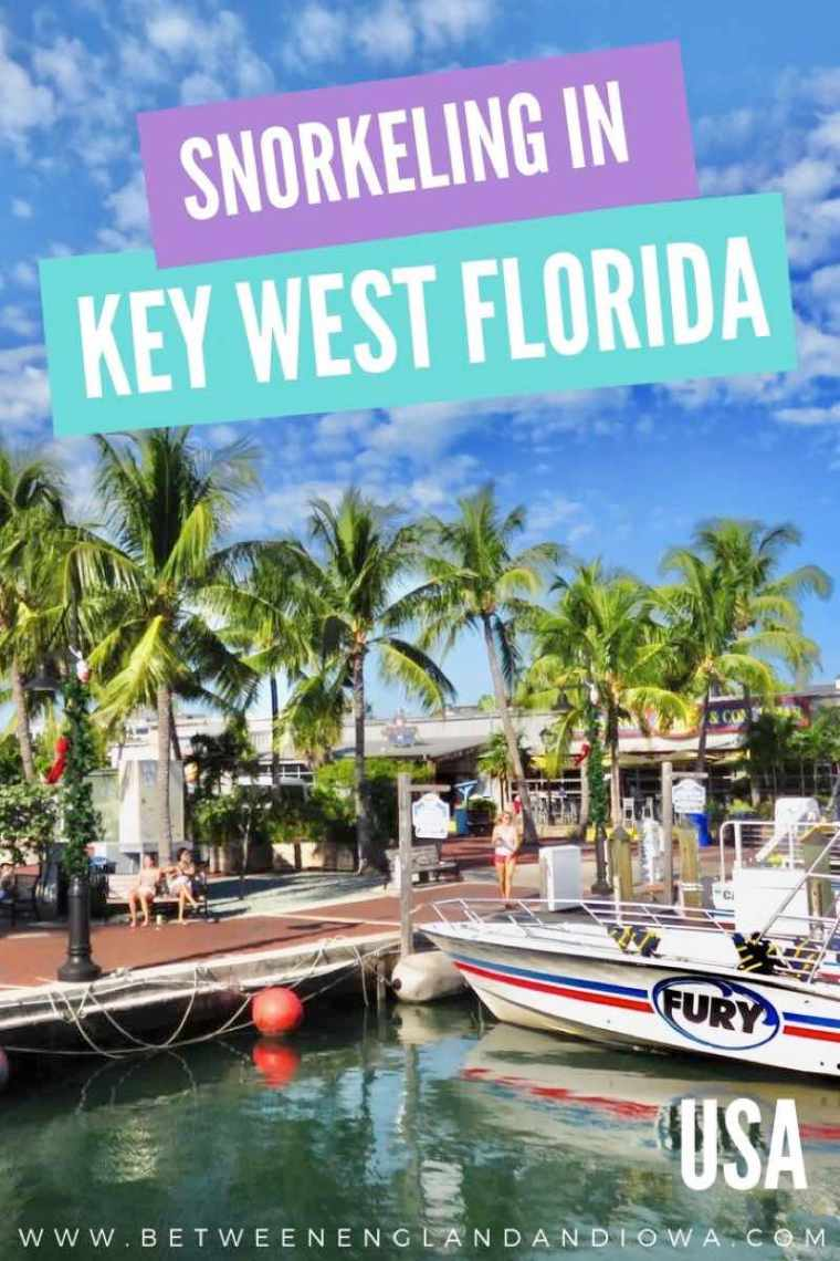 Snorkel Key West Florida with Fury