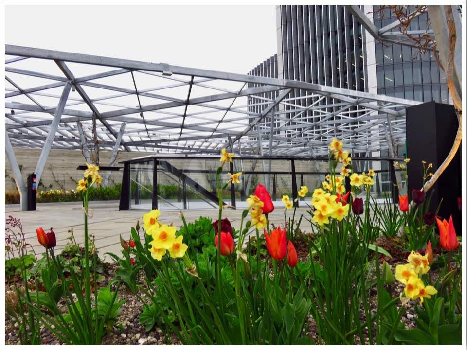 The Garden at 120 rooftop garden London