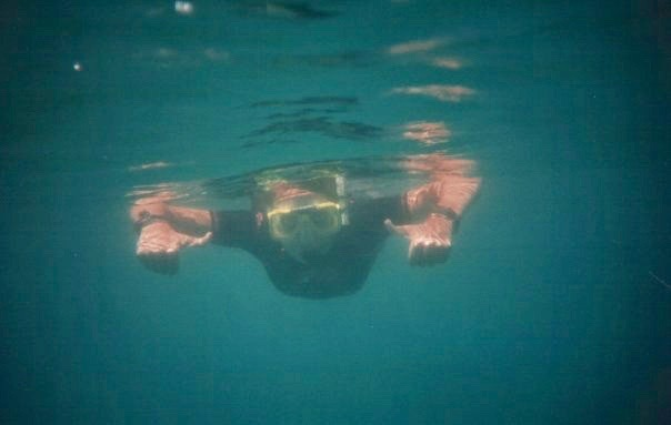 Snorkelling Australia 2008