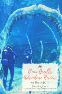 Bear Grylls Adventure Review
