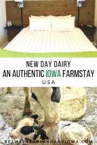 New Day Dairy Clarksville Iowa Bed and Breakfast
