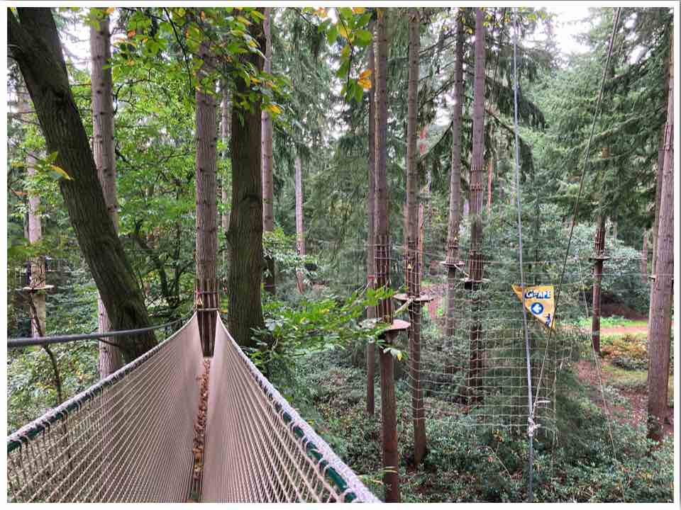 Go Ape Tarzan Swing Thetford Forest UK